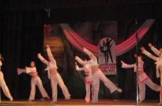 Підтвердження  звання «зразковий» ансамблю естрадного танцю «Мозаїка Ольвії»