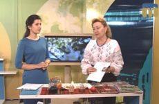 Миколаївщина Великодня: Галина Лозко у програмі «Новий день»