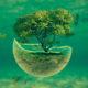 Символіка Дерева життя: від минувшини до сучасності