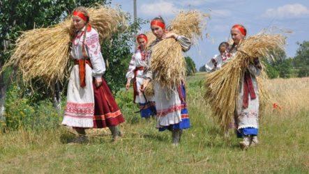 Жнива: обряди та традиції